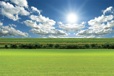 The sun shining over a green field